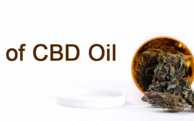 What are the Different Types of CBD Oil?